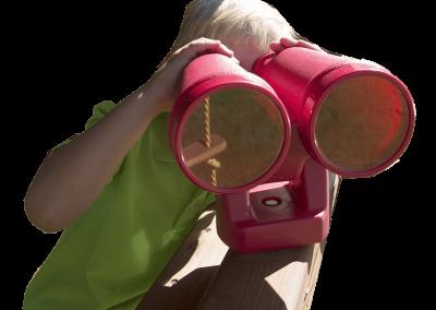 10d-Binoculars