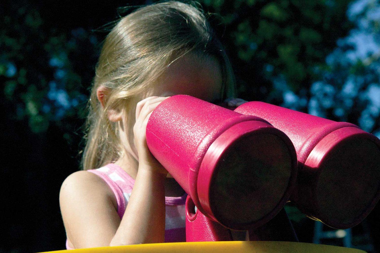 Commercial Binoculars